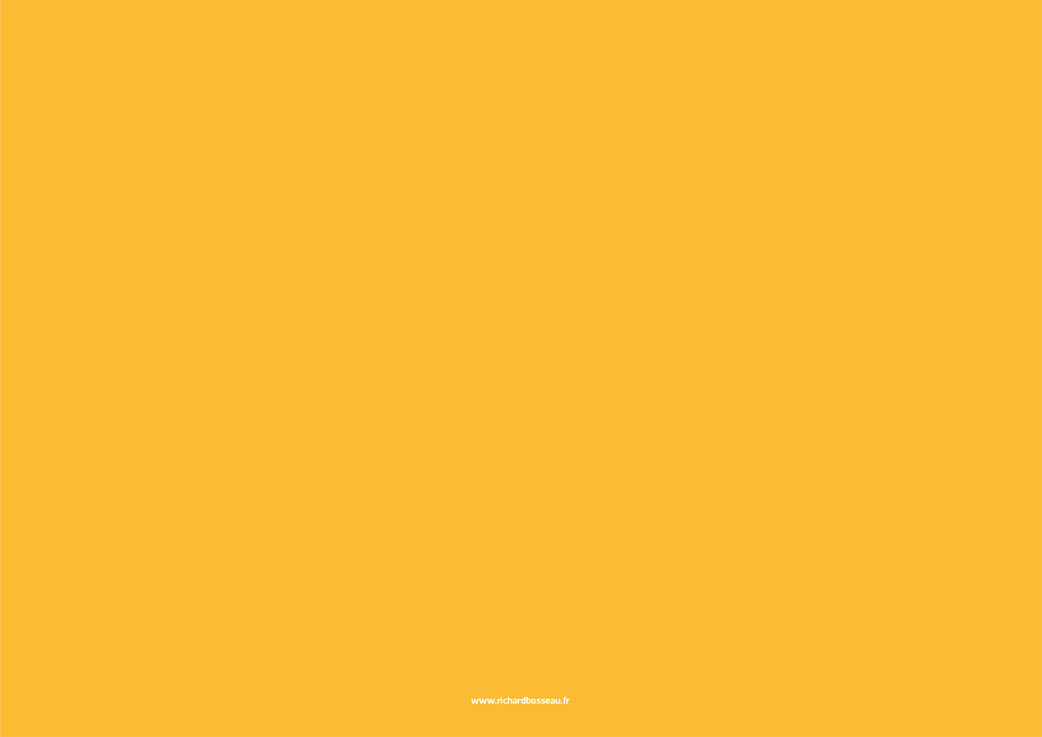 IDENTITE ALMAS - CHARTE GRAPHIQUE-26